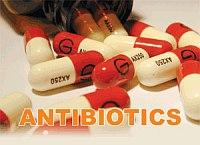 Dr.-Oz-antibiotics